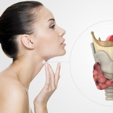 Metabolismo e Hormônios Tireoidianos